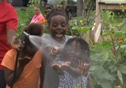 refugee-comunity-garden